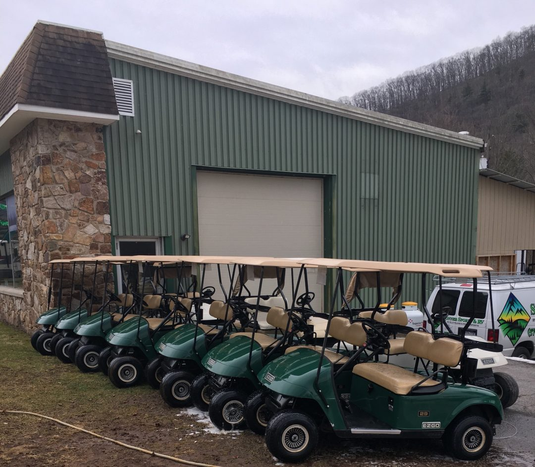 Electric & Gas Golf Carts