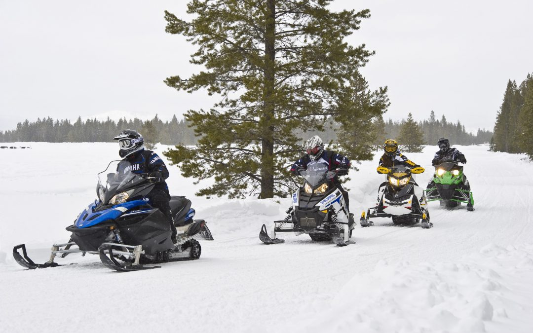In-Stock NOW. A Great Selection Of Quality Used Snowmobiles!!