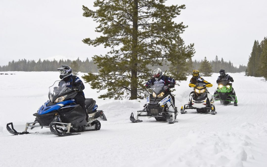 Huge Snowmobile Sale-Must Go!