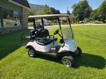 2009 Yamaha Electric Golf Cart