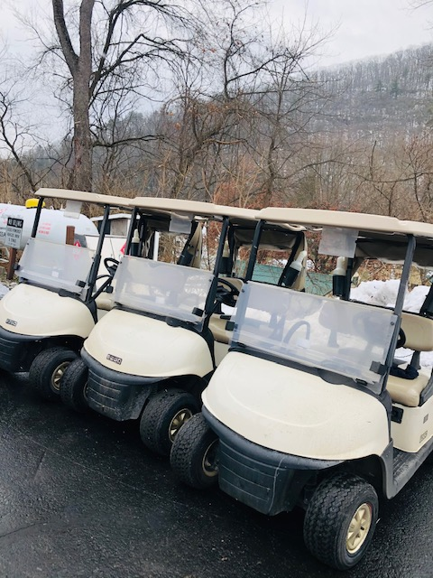 Golf Carts IN STOCK!