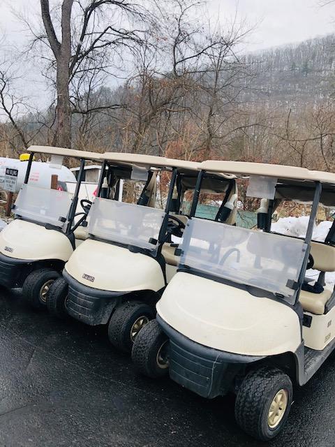 Golf Carts Arriving!